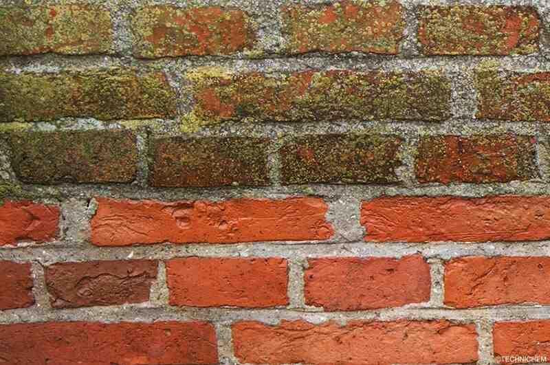 Comment enlever la moisissure des briques?