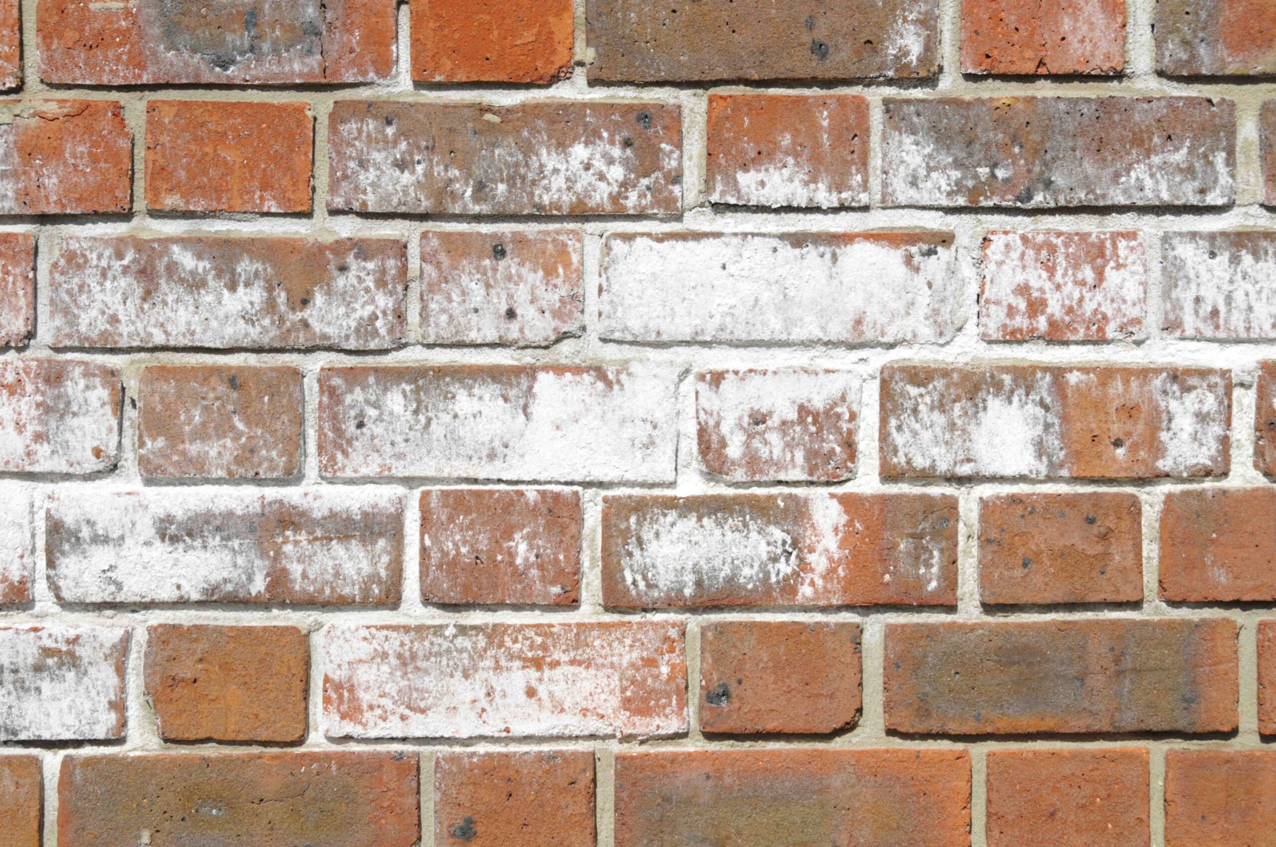 Comment enlever les taches blanches des briques ?